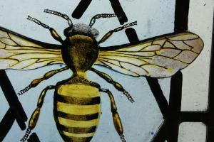 Bee Detail